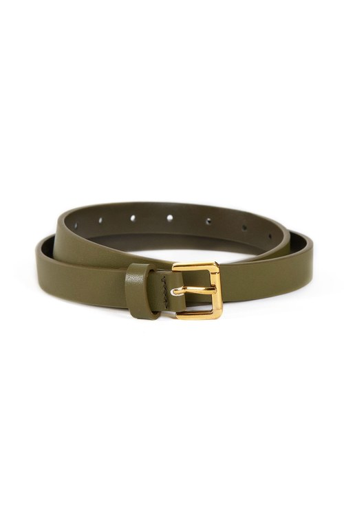 Classic gold buckle thin belt