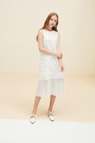 Lace elegant dress