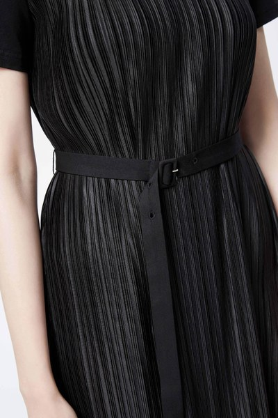 Delicate pleated dress